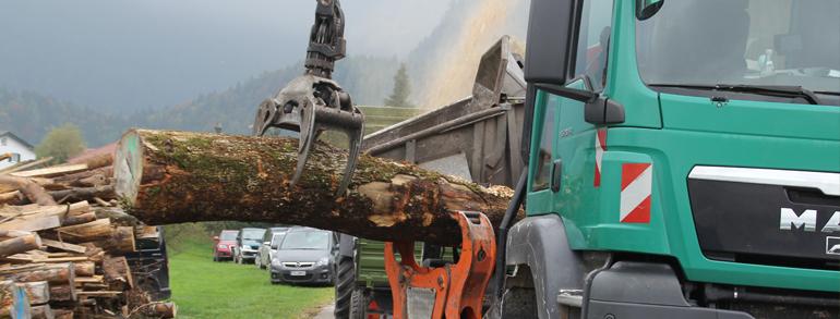 Wood-Terminator 11 Hack-Truck